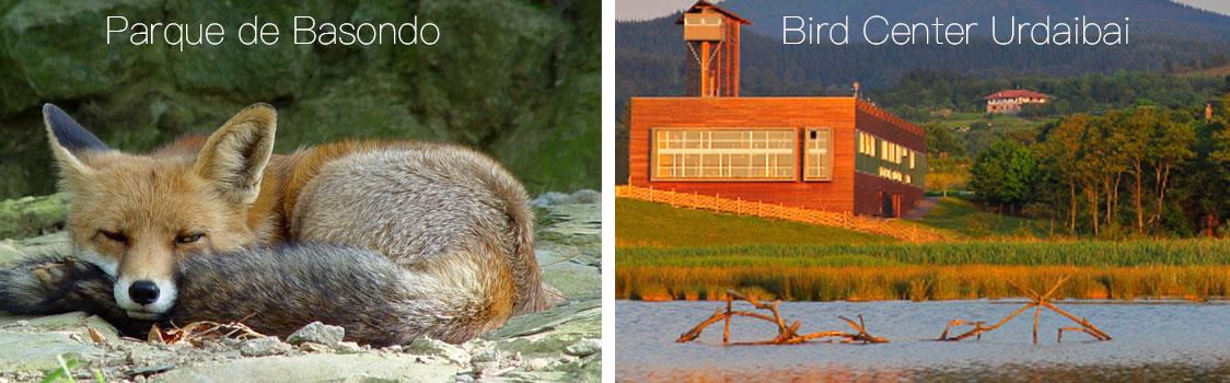 Parque de Basondo y Bird Center urdaibai